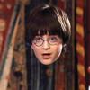 La cape d'invisibilité de Harry Potter devient réalité grâce à l'or